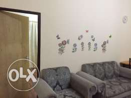 1 bhk semi furnished apartment (penthouse)available in old airport