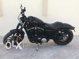2014 Harley Davidson Spostster Iron 883 for Sale