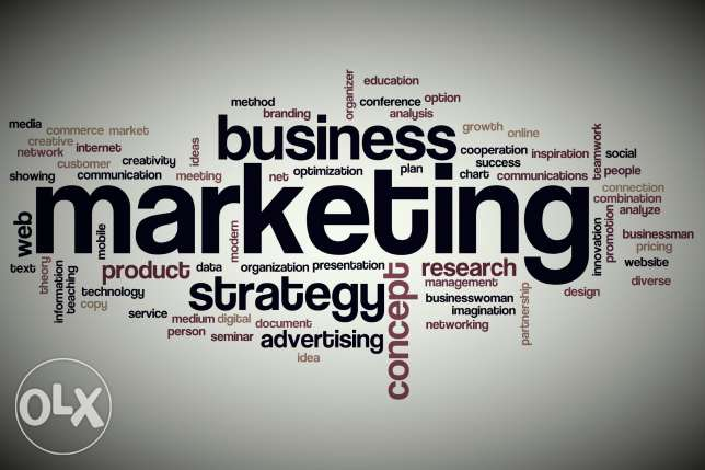 Technical Marketing in Software Company