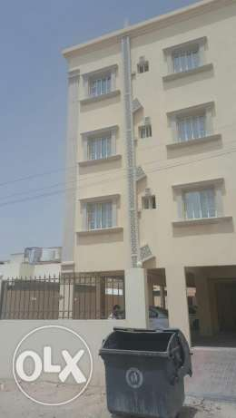 3BHK falt Apartment in Al Wakra (EXECUTIVE BACHELORS only )