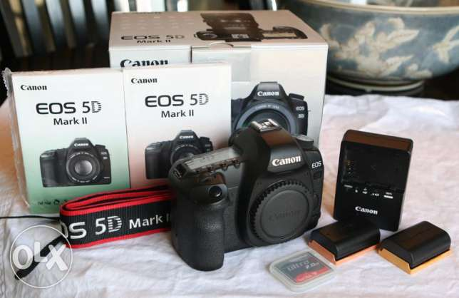 Bundle (Nik on D810) Body ONLY 36.3MP Full Frame FX DSLR Camera EXPRES