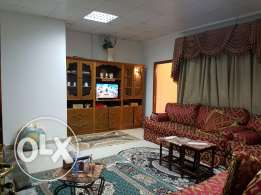 Full furnished apartments for bachelor's