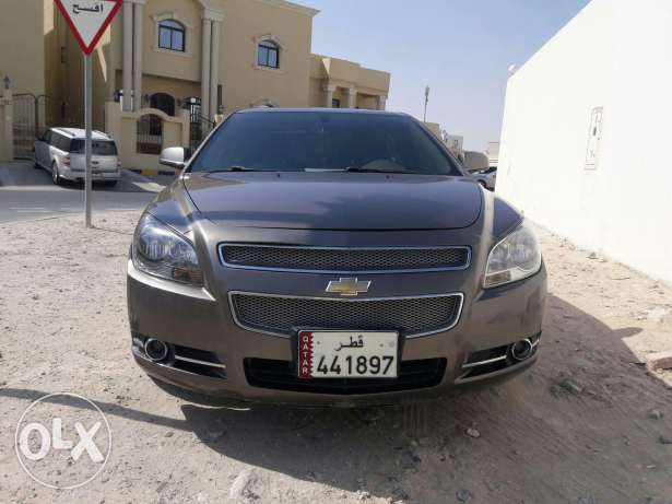 Malibu gull option LTZ الدفنة -  2