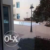 Fully furnished 3-bhk Apartment in AL Nasr,Pool,Gymanisium