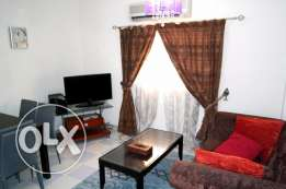 fully furnished beautiful 2 bhk apartment in old airport