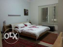 Beautiful Fully Furnished 1 Bedroom