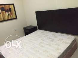 RG2 Full Furnished 01Bhk apartment - New Doha