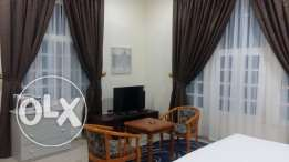 DUHAIL - Brand new fully furnished villa apartments near Land mark
