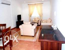 beautiful fully furnished 2 bhk apartment in old salata
