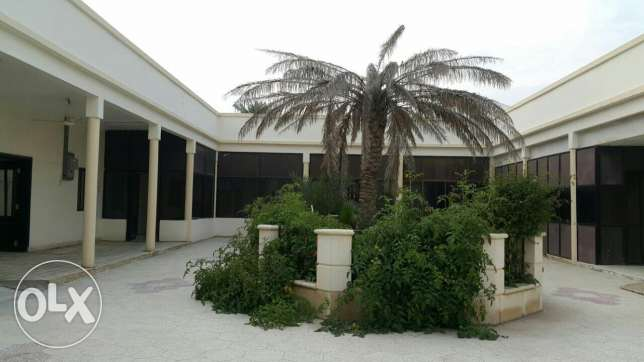 15 Bedrooms single stand villa for rent available in al Naser