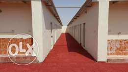 Brand new Labour Camp 5 compound for rent at Al Shahaniya