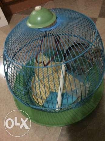 Birds Cage in very good condition for Sale for Only 15QR