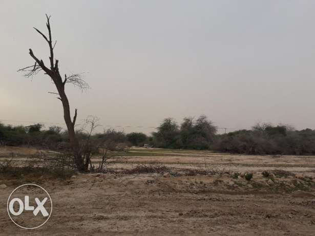 Open LAND Suitable For All Purpose Near AL WUKAIR For RENT