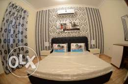 luxury 2-bedroom fully furnished flats for rent in al nasr