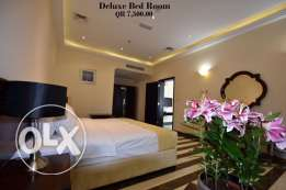 Luxury Fully Furnished 1-Bedroom Flat in Musherib-Daily House Keeping