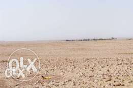 LAND for RENT near to logistic village.