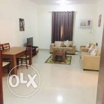 Spacious 3 bhk fully furnished flat in old airport for family