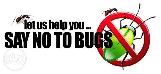 Best bed bug control service in qatar