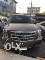 Cadillac ESCALADE PLATINUM 2014 Model 11000kms