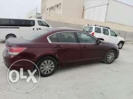 Honda Accord 2011 maroon color urgent sale