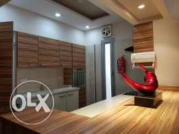 Fully furnished modern design villa for rent