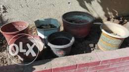 Planting pots for sale