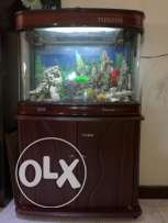 Beautiful Fish Tank/Aquarium w/o Fish
