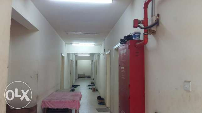 16 rooms for rent Doha industrial area