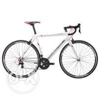 New, High Quality SILVERBACK STRELA 1 (Germany) Shimano 105