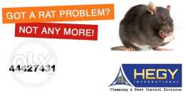 Best rat control service in qatar