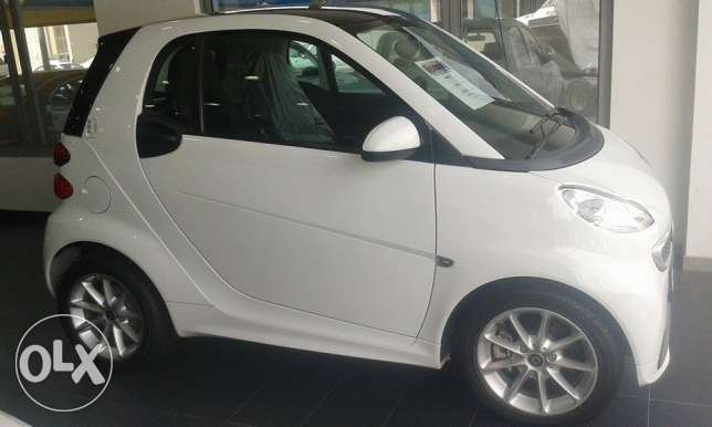 Smart Puchn 2014 NEW