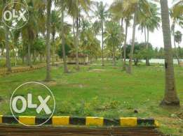 Lowest Price Invetsment Plot & Ready To Construct Plot Sell Now