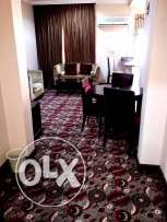 fully furnished 1 bhk apartment in old salata