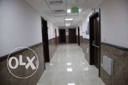 Executive bachelor&:familyBrand new Flate rent in Dohajadeed