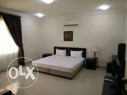 Fully furnished spacious 1 bedroom villa apartment near city center