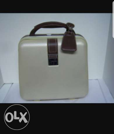 Delsey small leather travelling bag