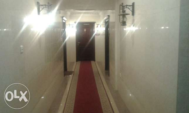 1 BHK Fully furnished apartment for rent in Old Salata Near Corniche