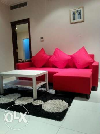 Fully Furnished 1 BHK in Old Salata