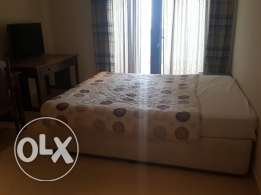 Gorgeous 1br fully furnished including utilities