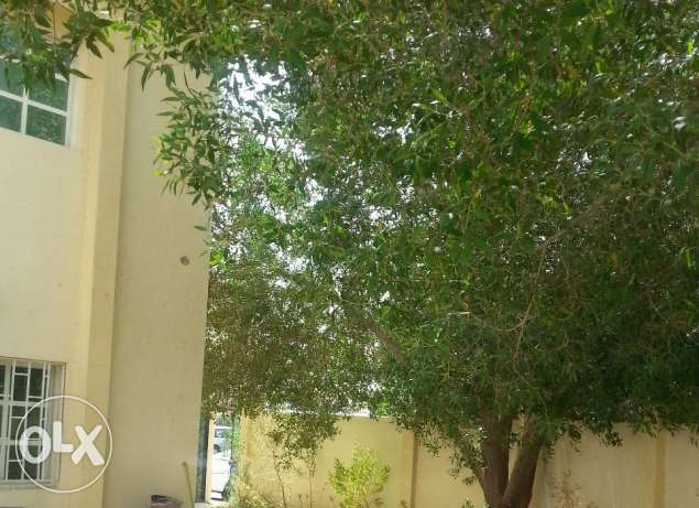 Good Single 4 B/R Villa for rent near Salwa Road in Al-Waab