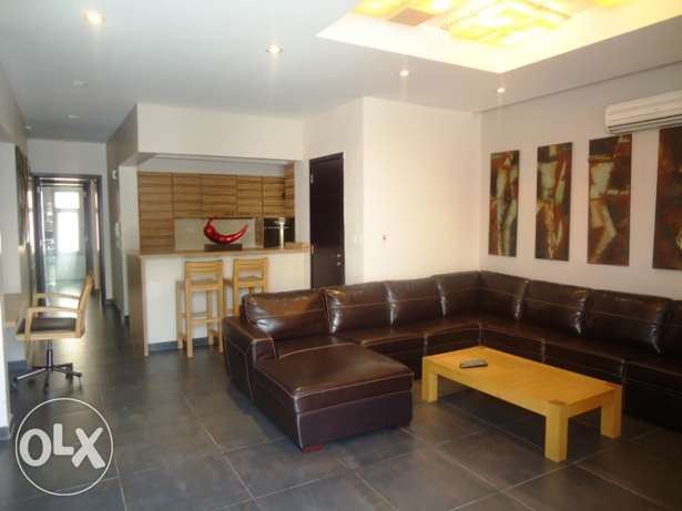 Modern Furnished villa (1 month free)