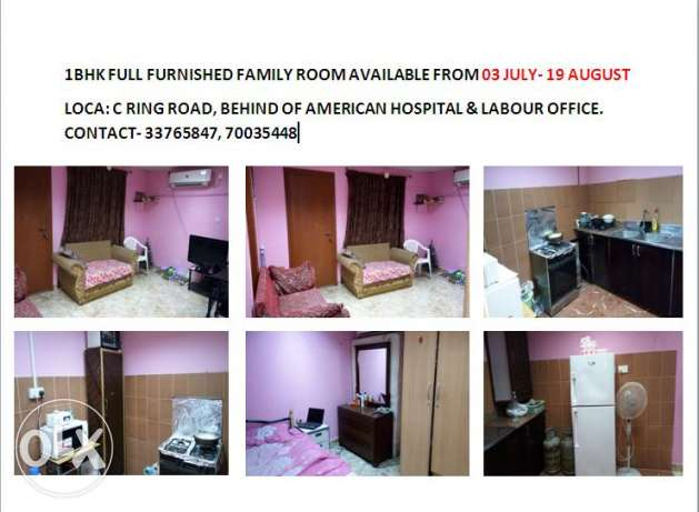 1 BHK full furnished for family July - August