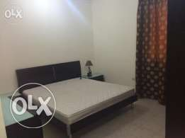 Nice Fully Furnished 2 BHK near Mellenuim Hotel Al Sadd
