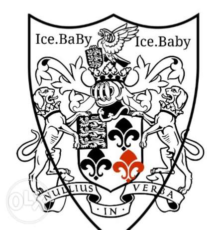 Edexcel-Igaschannel Ice.Baby Assessment website