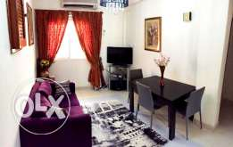 fully furnished 2 bhk apartment in old airport