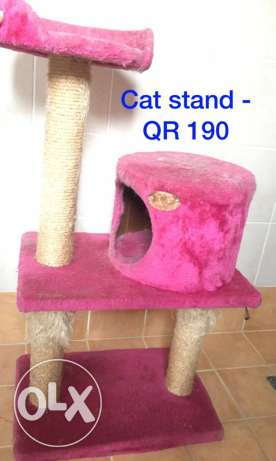 cat stand and plants