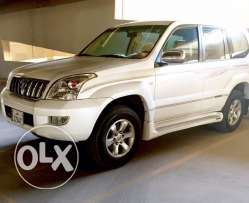 Limited edition PRADO