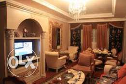 Beautifully decored 2 BR F/F apartment in Mansoura