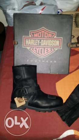 Harley Davidson Shoes / Boots