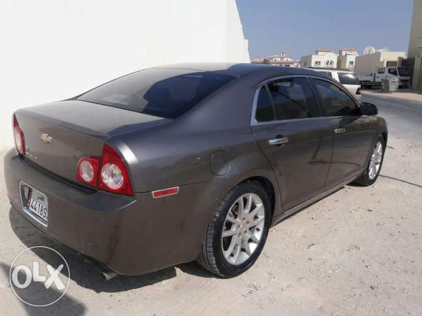 Malibu gull option LTZ الدفنة -  3